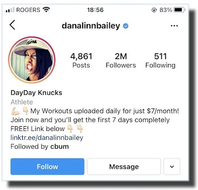 Instagram benefits in bio danalinnbailey