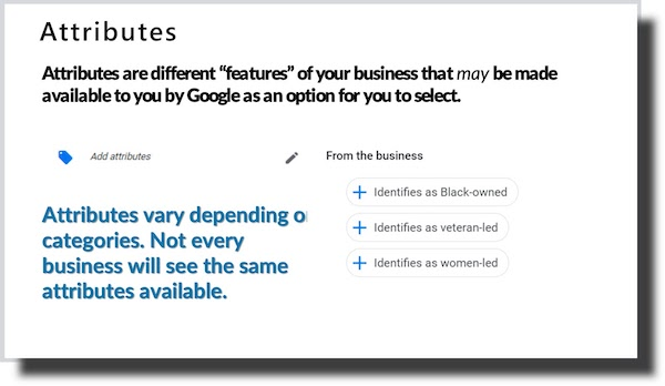 Attributes Are Features of a Business
